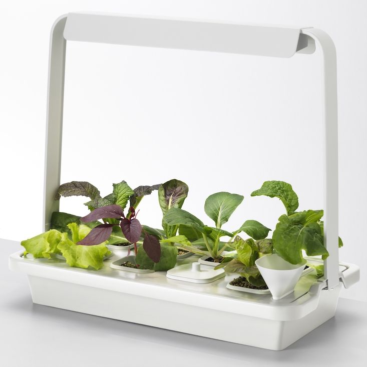 New From Ikea A Hydroponic Countertop Garden Kit With Images