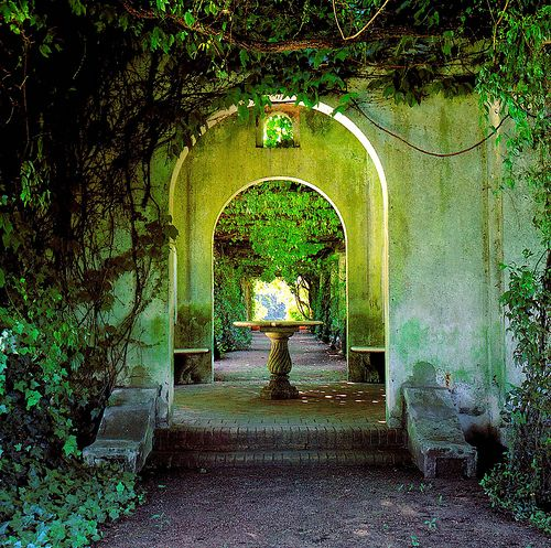 Ivy portal, Tuscany: Gardens Ideas, Secret Gardens, Favorite Places, Secret Places, Pools Patios, Beautiful Creatures Movie, Fairyte Gardens, Tuscany Italy, Dreamy Places