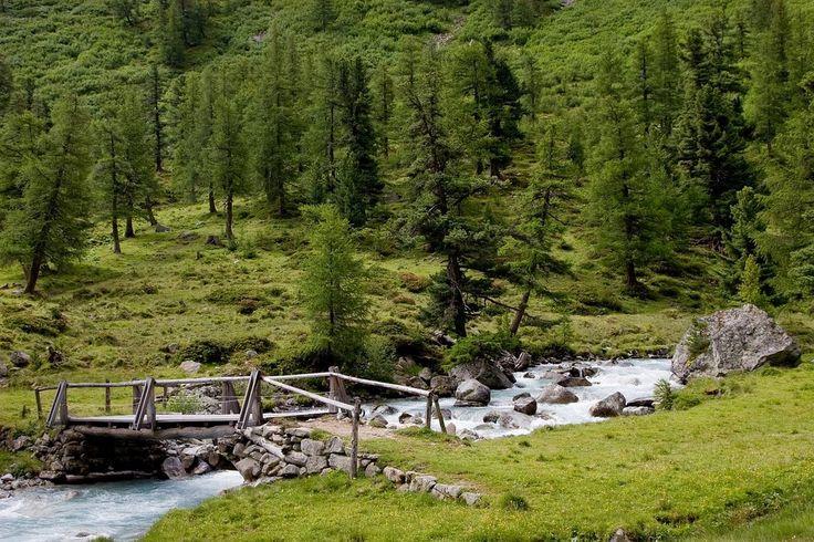 Holz Brücke