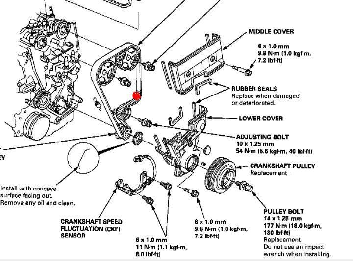 automotive timing belts