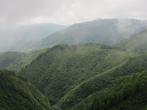 Green Mountains of Kathmandu