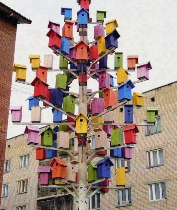 Lovely Architecture for Birds #bird #hangoout @cherbeat