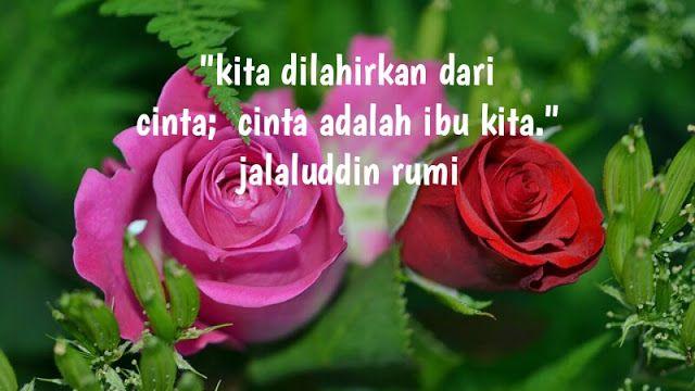 Kata Mutiara Islami Rumi Kutipan Kehidupan Cinta Dan Motivasi Rumi Mutiara Motivasi