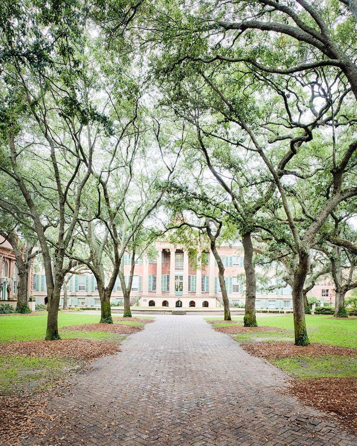 ***College of Charleston campus, Charleston, SC                                                                                                                                                                                 More