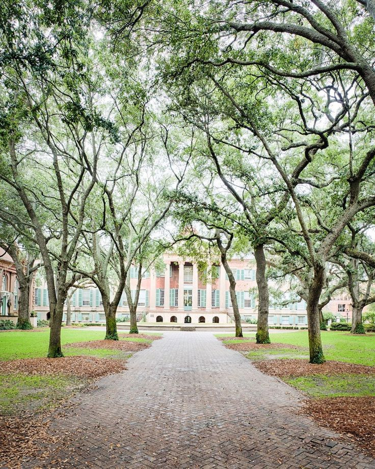 ***College of Charleston campus, Charleston, SC                                                                                                                                                                                 More