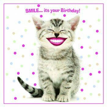 Smiling birthday cat