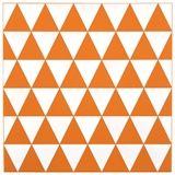 Adder Placemat 30x30cm Orange