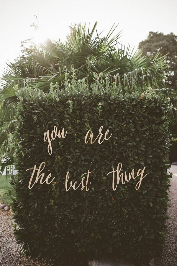you are the best thing