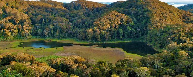 Mount Apo's Lake Venado provides a refreshing expanse of marshy flatland after a precipitous ascent through the rainforest. (Christina Durano) (Credit: Christina Durano)