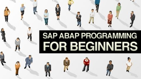 SAP ABAP Programming For Beginners - Complete Beginners Guide To Programming SAP Enterprise Systems Using the ABAP Programming language - $127