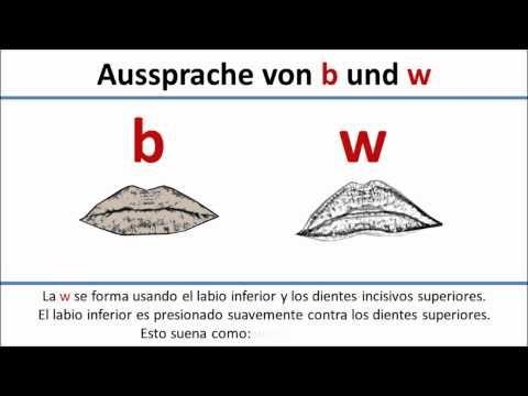 Alemán: pronunciación b (labial) y w (labiodental)/Aussprache b vs. w (spanische Untertitel)
