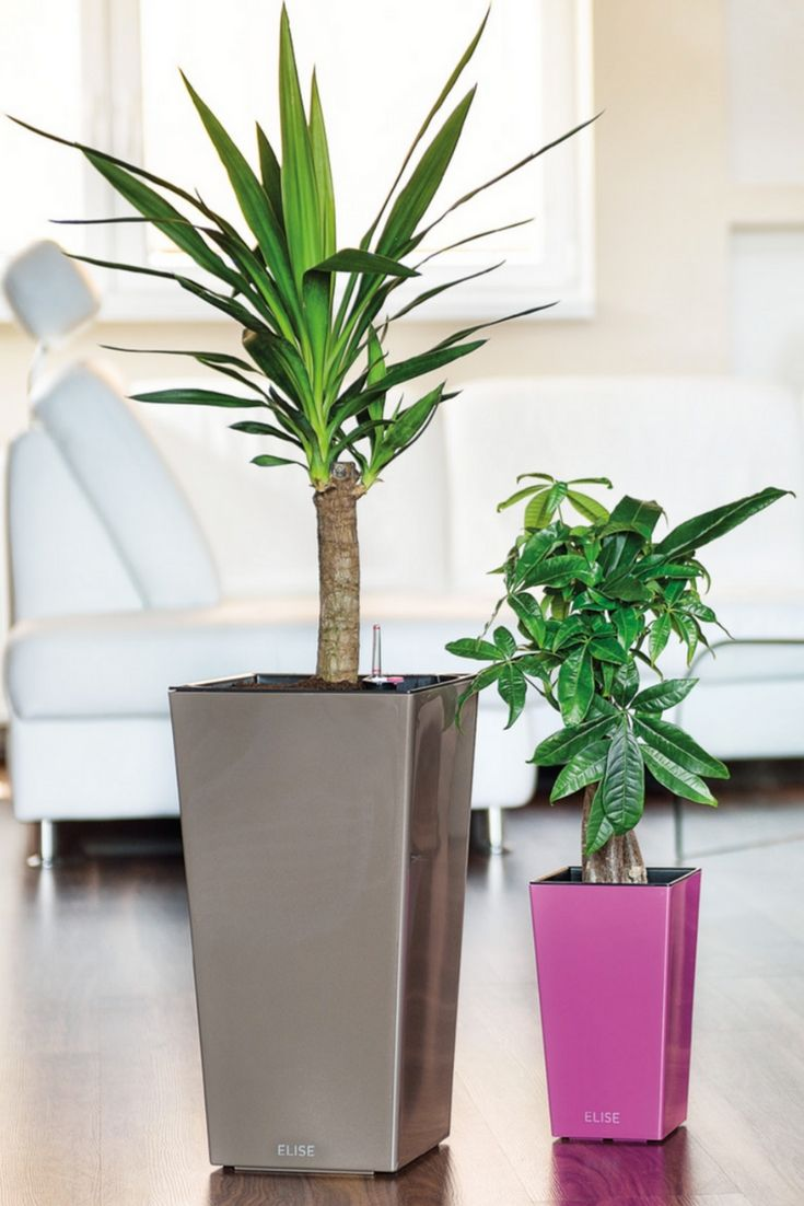 Indoor or outdoor, this flower pot will give a sleek look to your interior or patio. Explore all color and size combinations - head over to the link