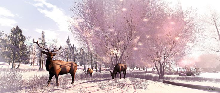 Jacobs Pond - Elks | Flickr - Photo Sharing!