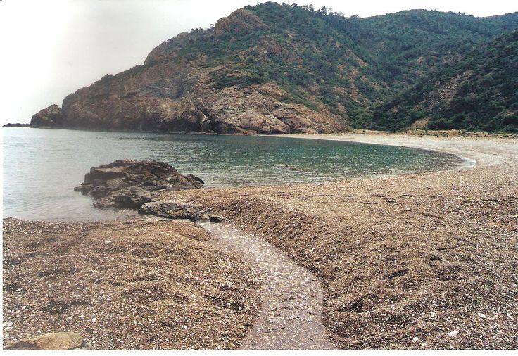 Και όμως αυτή η μαγική παραλία βρίσκεται στην Εύβοια!