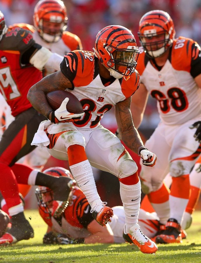 Cincinnati Bengals Team Photos - ESPN