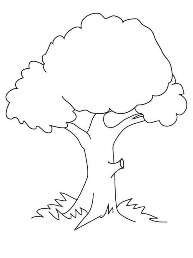 Malvorlage Baum kostenlos zum Drucken für Kinder 01 #