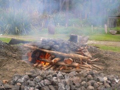 Alessandra Zecchini: Te Waka Kai Ora, cooking with a hangi, traditional Maori earth oven