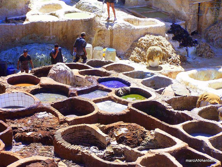 Tenerías de Chouara, Fez