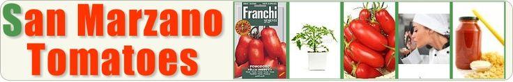San Marzano Tomatoes Website - Growing, Varieties, History, Making Sauce & A lot more...