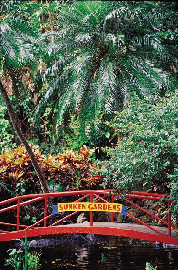 10 Secret Florida Theme Parks | Best Theme Parks in Florida | Cool Things to Do in Florida | Sunken Gardens