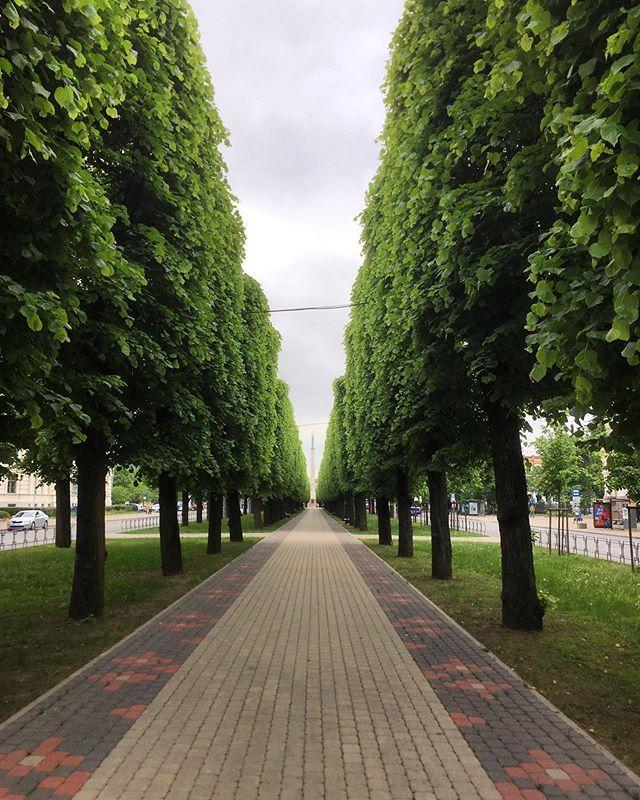A Little Tree Lined Perspective In Riga Towards The Victorymonument Igersriga Visitriga I Dark Art Photography Line Art Art Drawings Beautiful