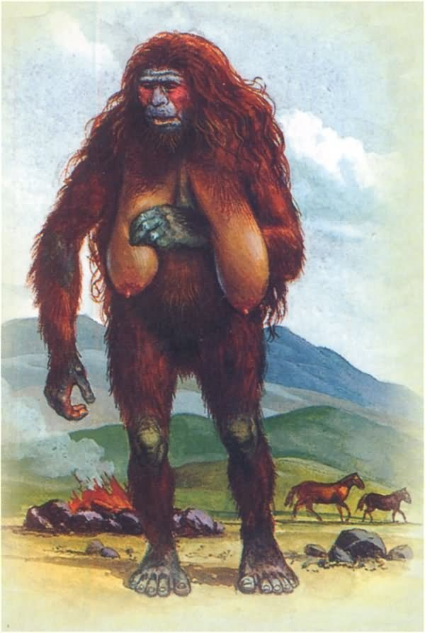 17 Best images about Bigfoot on Pinterest | Bigfoot ...