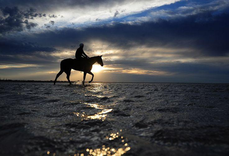 Ένα καθαρόαιμο άλογο κούρσας βαδίζει χαράματα με τον αναβάτη του στα ρηχά νερά της παραλίας Αλτόνα  στη Μελβούρνη της Αυστραλίας.