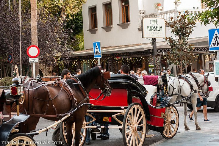 Horse cars in Marbella