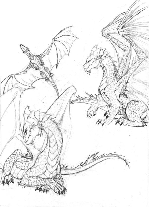 Dragon sketch 1 by larkabella on DeviantArt