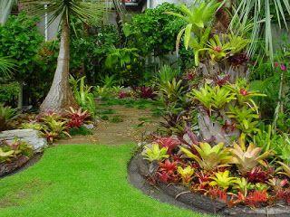 Bioflora paisagismo e jardinagem o incr vel mundo das for Paisagismo e jardinagem