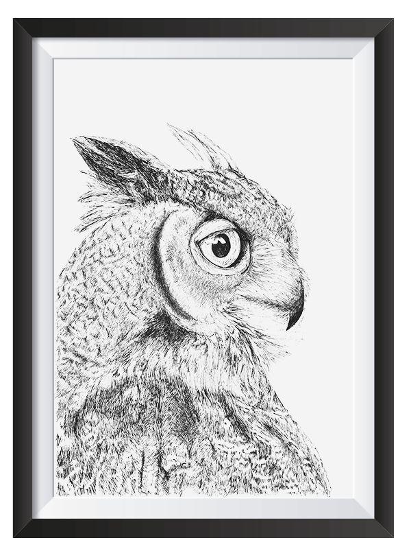 Owl illsutrated with Pen by Nicoll van der Nest