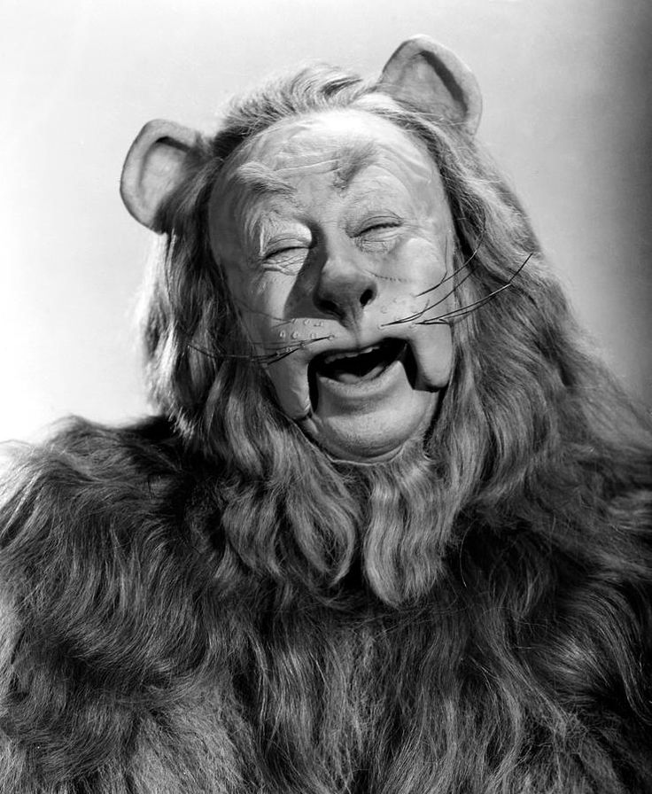 The Cowardly Lion: Becomes courageous- He comes to understand that courage means acting in the face of fear, which he does frequently