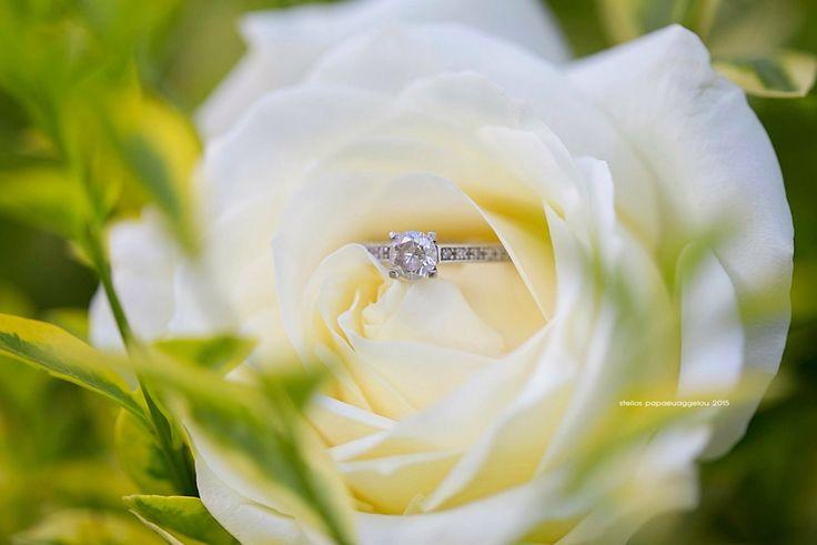 Wedding rose ring