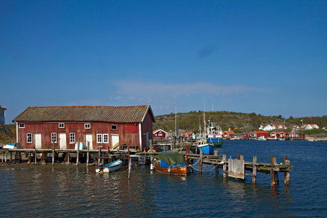 Koster island Sweden http://www.travelwithallsenses.com/koster-islands-living-archipelago/