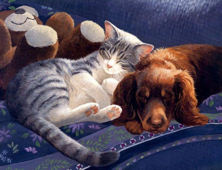Открытки кошки собаки