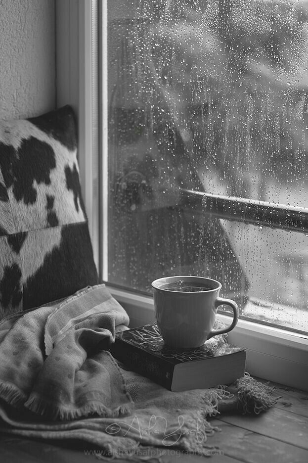 Drinking A Cup Of Tea While Reading Book Snuggled In Blanket As The Rain Taps On Window