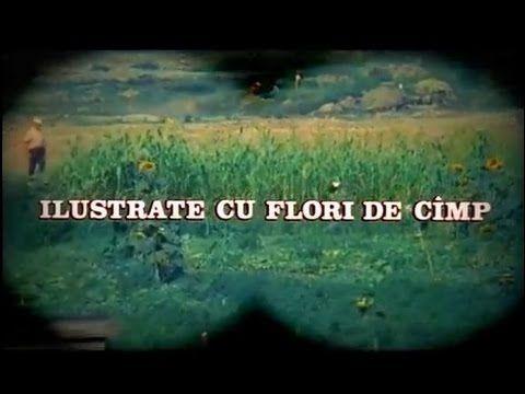 """""""Ilustrate cu flori de câmp"""" - Bijuterie !"""