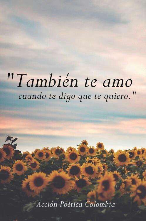 Tambien te amo cuando te digo que te quiero