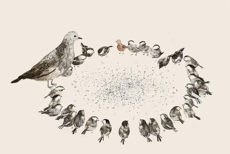 bird beaks.....
