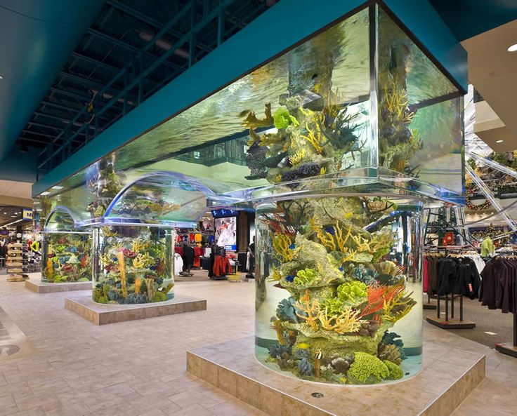 aquariums | Custom Made Acrylic Aquariums - Large Commercial Aquariums - Aquarium ...