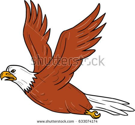 Illustration of an angry eagle flying wings flapping viewed from the side set on isolated white background done in cartoon style.  #eagle #cartoon #illustration