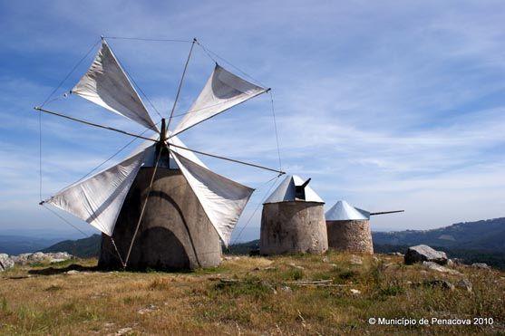 moinhos de vento - penacova