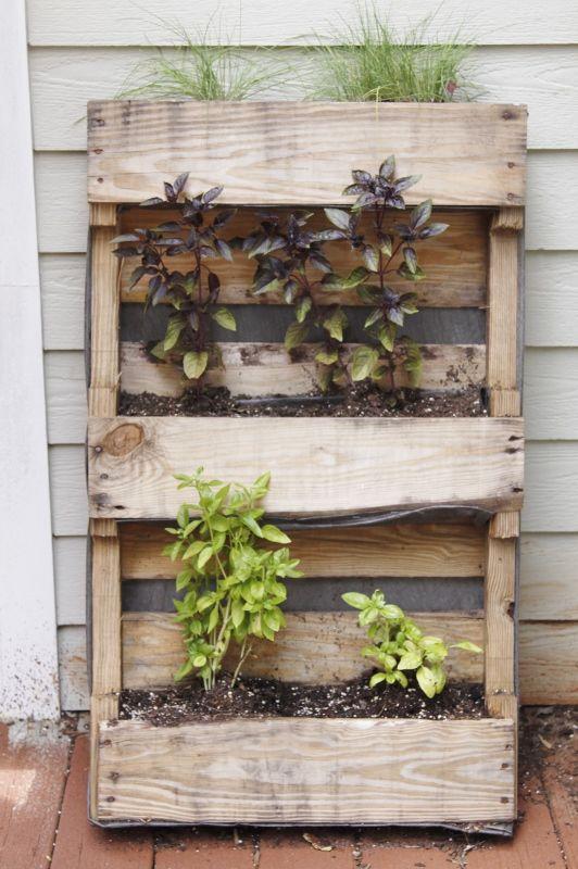 DIY Palette Herb Garden via @Paula - bell'alimento