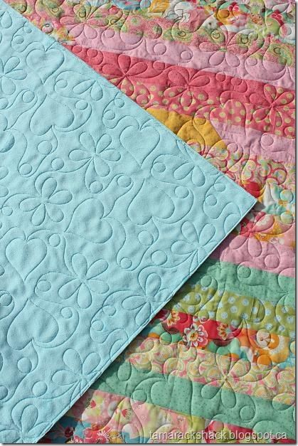 209 best images about free motion quilting on pinterest for Space minky fabric