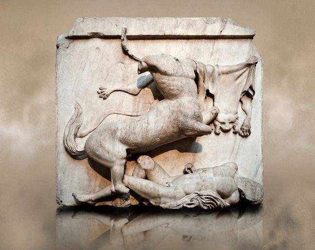 Sculpture of Lapiths and Centaurs battling from the Metope of the Parthenon on the Acropolis of Athens no XXVIII. Also known as the Elgin marbles. British Museum London.| © Paul Randall Williams 2012.