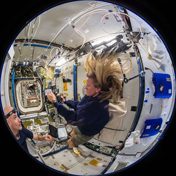 Astronaut Karen Nyberg, Expedition 36 flight in the Tranquility node of the International Space Station, public domain via Wikimedia Commons.