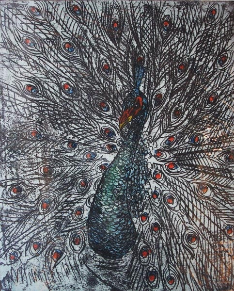 Peacock by Marilyn Southey