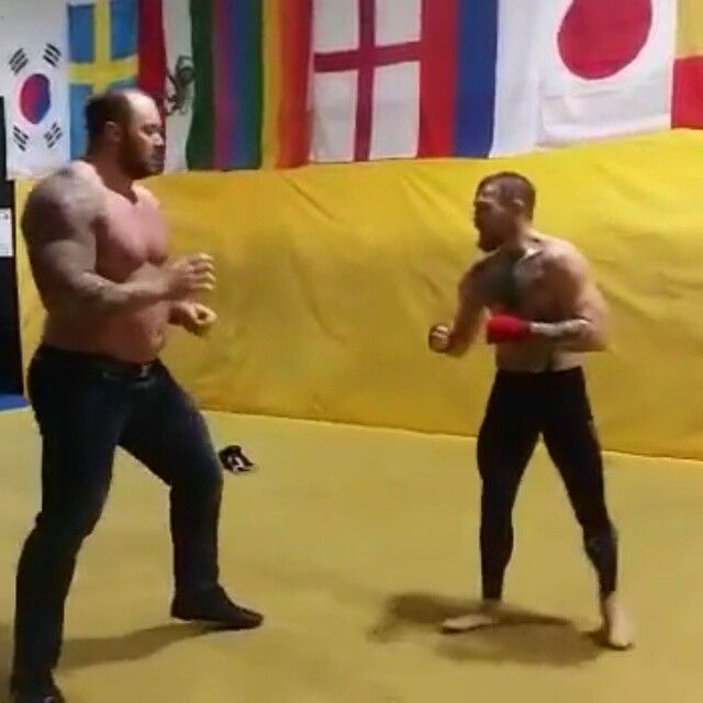 Just saw this the other day...wow.  To put this in perspective, Conor is 145 pounds (or probably around that weight in this video) and the other guy is 400+!!!! Every fighters fantasy and worse nightmare lol.  @thenotoriousmma  #400 #pound #man #mma #insane #traininsane #fight #taekwondo #kickboxing #boxing #karate #legend #wow #awesome #badass #ireland #dope #kick #skilled #bjj #wrestling #fighting #fight #tekken #streetfighter #fit #fitness #justdoit #grit #strong