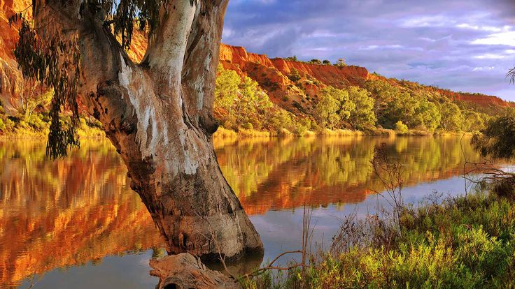 South Australia's Riverland is a special place where the cool, meandering river feeds wetlands and irrigates citrus groves. You set the pace, either action-packed river sports, or tasting the best of fresh seasonal fruits and vegetables and unique beer and wines. Bring your family and friends and switch to 'River time'.
