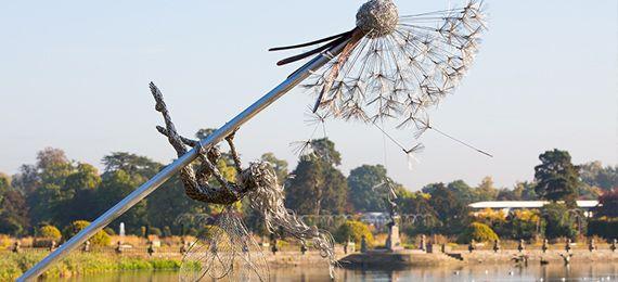 Dandelion Fairies at Trentham